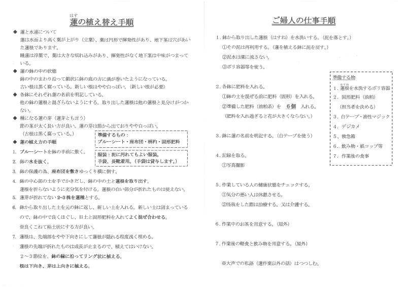 a-蓮植替マニュアル