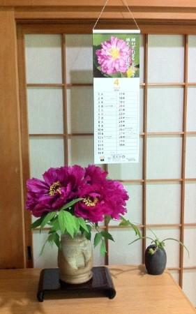 d牡丹カレンダー